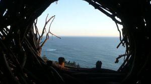 treebones-nest